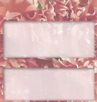 <h3>Dahlia Profusion Candy Wrapper </h3>