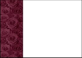 Bordeaux Roses
