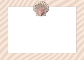 <h3>Seashell Invitation </h3>