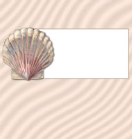 <h3>Seashell Candy Wrapper </h3>